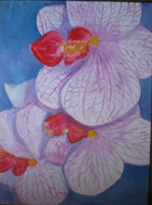 Orchidee, painted by Clive Ewing, 60x80cm, acrylic, canvas