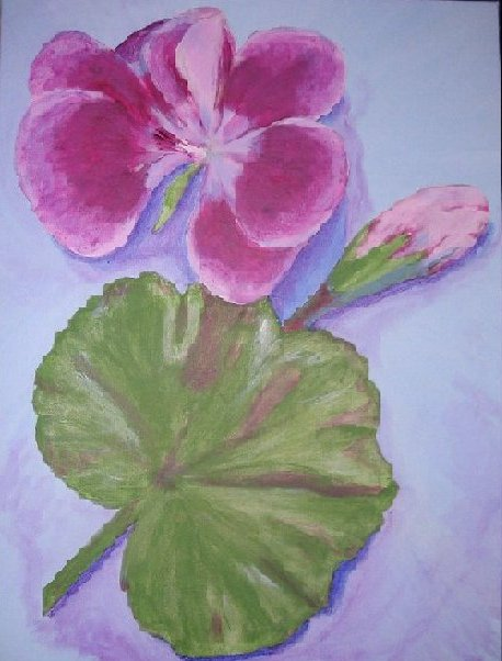 Geranium, painted by Clive Ewing, 60x80cm, acrylic, canvas